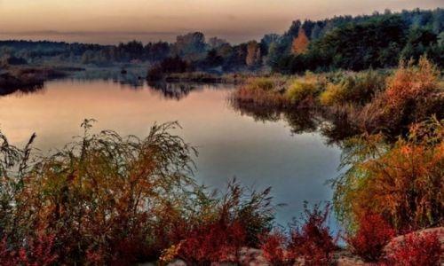 Zdjecie POLSKA / łódzkie / ok Łowicza / Jesień nad wodą