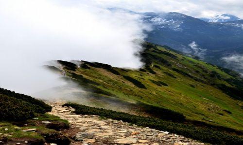 Zdjecie POLSKA / Tatry / Suche Czuby / droga w chmurach