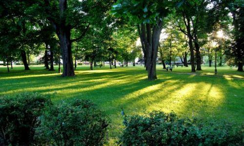 Zdjęcie POLSKA / Augustowszczyzna / Augustow / W miejskim parku
