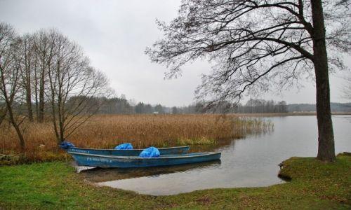 Zdjęcie POLSKA / Augustowszczyzna / Sucha Rzeczka / Nad Jeziorem Serwy