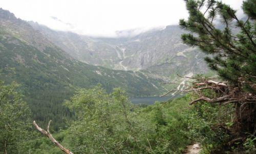 Zdjecie POLSKA / Tatry / - / Widok na Morskie Oko ze szlaku do Dol. PIęciu Stawów