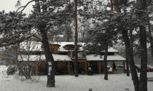 Zdjęcie POLSKA / okolice Radomia / Jedlnia Letnisko / zima 2013 koło Radomia