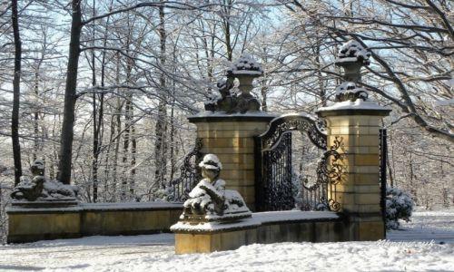 Zdjecie POLSKA / Dolnośląskie / Walbryzch / Zamek Książ zimą - brama