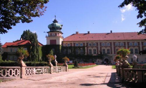 Zdjęcie POLSKA / -podkarpackie / Łańcut / zamki polskie