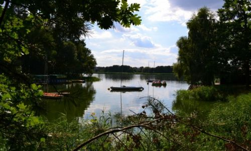 Zdjecie POLSKA / wielkopolska / Gołuchów / Jezioro Gołuchowskie