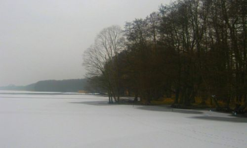 Zdjecie POLSKA / zachodniopomorskie / Jezioro Miedwie - Morzyczyn /  zimowa nostalgia miedwiańskiego jeziora