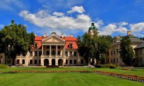 Zdjęcie POLSKA / lubelskie / Kozłówka / W Kozłówce