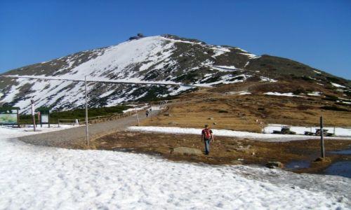 Zdjecie POLSKA / Karkonosze / Karkonosze / W drodze na Śnieżkę