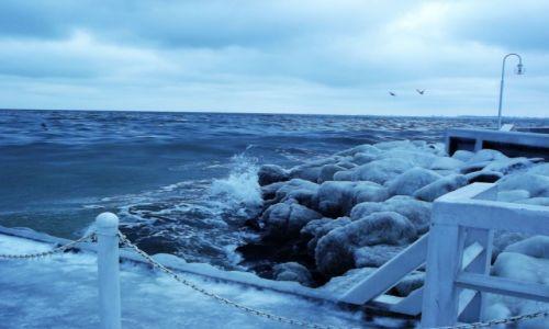 Zdjęcie POLSKA / Sopot / molo / zima nad morzem