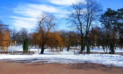 Zdjecie POLSKA / Mazowieckie / Mińsk Mazowiecki / Przypałacowy park