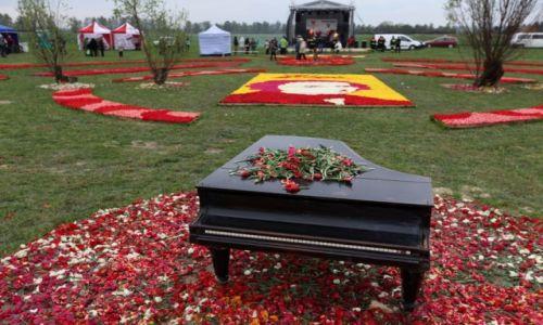 POLSKA / Pomorze / Mokry Dwór / Tulipany dla Chopina