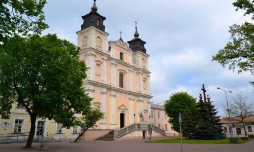 Zdjecie POLSKA / Lubelszczyzna / Łuków / Łukowska kolegiata