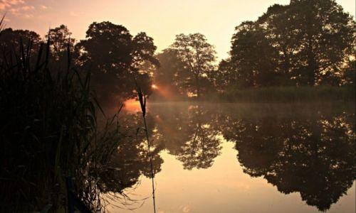 Zdjęcie POLSKA / Powiat  Żniński. / Antoniewo /  Wiosenne  mgły o wschodzie słońca.