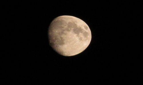 Zdjecie POLSKA / :) / NIEBO :P / księżyc raz odwiedził staw......