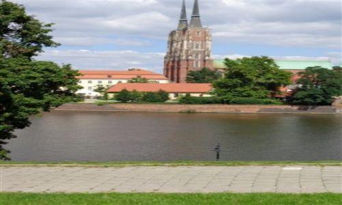 Zdjęcie POLSKA / Krakow / Krakow / Nad Wisla