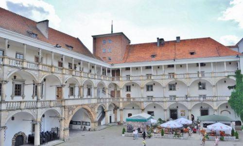 Zdjęcie POLSKA / Śląsk Opolski / Brzeg / Brzeg, zamek