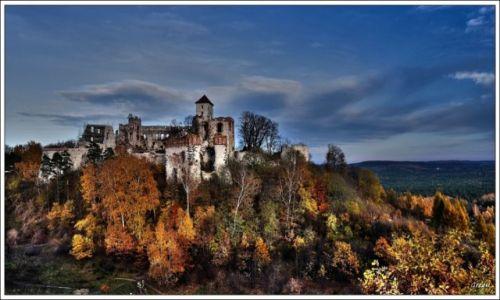 Zdjęcie POLSKA / Małopolska / Tenczyn / Zamek Tenczyn