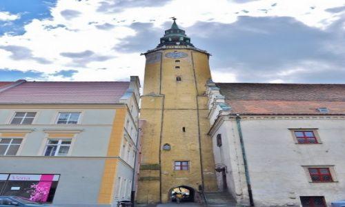 Zdjęcie POLSKA / Śląsk Opolski / Brzeg / Ratusz