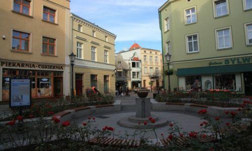Zdjęcie POLSKA / Pomorze / Tczew / Różany zaułek