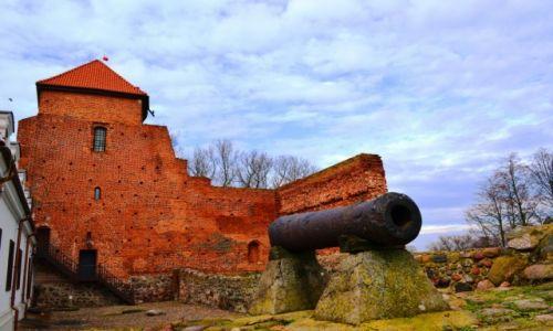 Zdjęcie POLSKA / Mazowieckie / Liw / Na resztkach murów