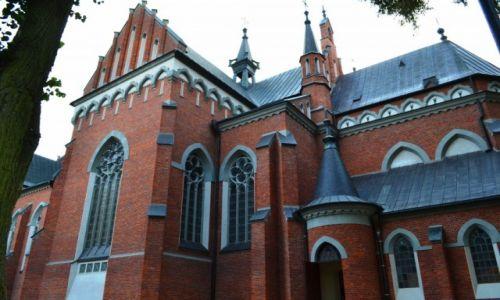 Zdjęcie POLSKA / lubelszczyzna / Wąwolnica / Kościół św. Wojciecha