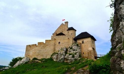 Zdjęcie POLSKA / śląskie / Bobolice / Odnowiony zamek