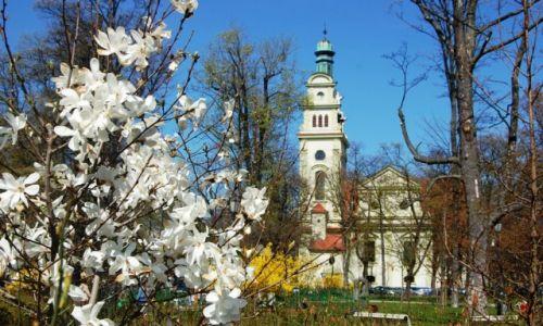 Zdjecie POLSKA / - / Sopot / wiosna :)