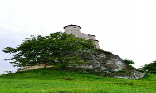 Zdjęcie POLSKA / śląskie / Bobolice / Zamek na wysokiej skale