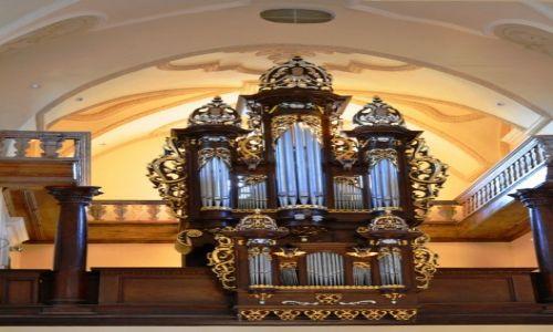 Zdjęcie POLSKA / Lubelszczyzna / Gołąb / Organy Gołąbskiego kościoła
