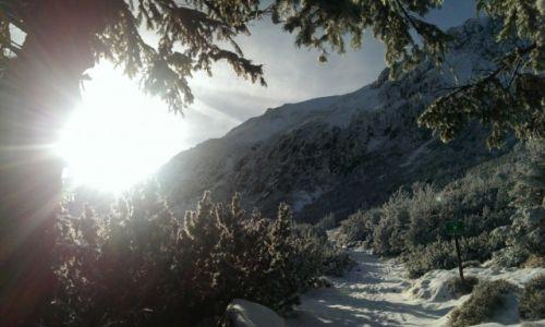 Zdjecie POLSKA / Karkonosze / Szlak niebieski / Na Karkonowskim szlaku w drodze do Samotni