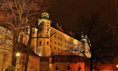 Zdjecie POLSKA / Małopolska / Kraków / Kraków, Wawel