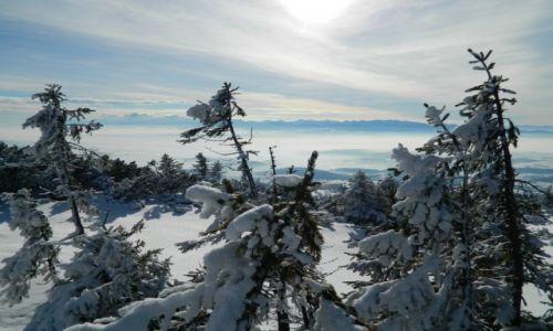 Zdjecie POLSKA / Beskid / widok na Tatry / BABIA Góra 2014