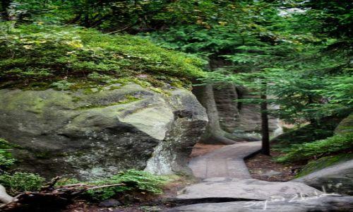 Zdjęcie POLSKA / Góry Stołowe / Szczeliniec Wielki / Szczeliniec Wielki