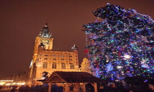 Zdjecie POLSKA / - / Gdańsk, Długa / Gdańsk, Sylwester, 1sza rano