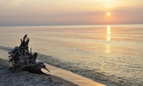 Zdjecie POLSKA / Morze Bałtyckie / Stegna / konkurs