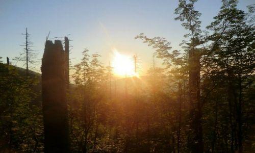 Zdjecie POLSKA / Babiogórski Park Narodowy / Babiogórski Park Narodowy / Zachód słońca