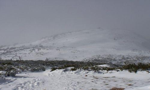 Zdjecie POLSKA / Babiogórski Park Nardowy / w drodze na Babią  / W zimowej odsłonie III