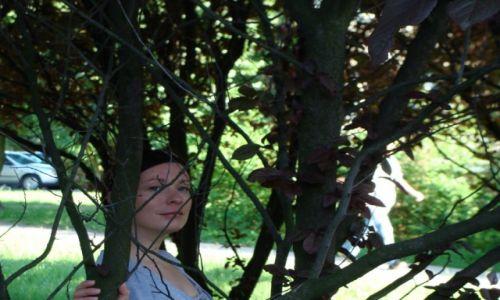 Zdjecie POLSKA / brak / brak / drzewa
