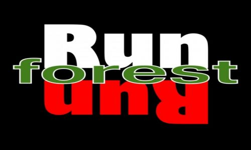 POLSKA / Bory Tucholskie / Czersk / Run, Forest, run