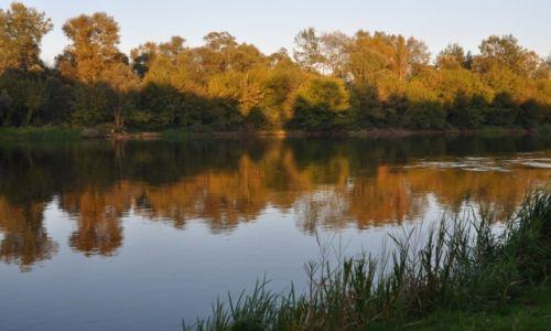 Zdjęcie POLSKA / rzeka Narew / gdzieś za Różanem  / Wieczorem