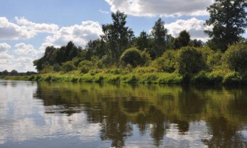 Zdjęcie POLSKA / rzeka Narew / gdzieś za Łomżą  / Rzeka