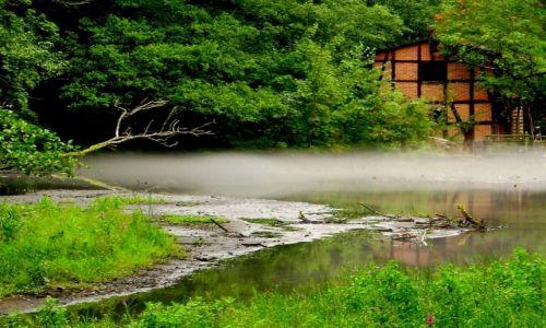 Zdjecie POLSKA / Kaszuby / Wejherowo - nad rzeką Cedron / był młyn...
