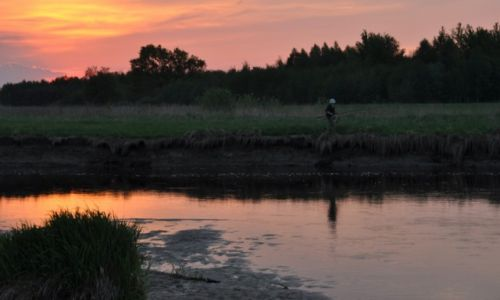Zdjęcie POLSKA / rzeka Wieprz / między Sobieszynem a Dęblinem / Wędkarka