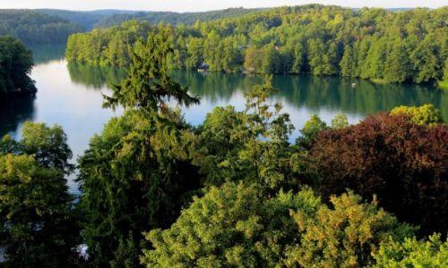 Zdjęcie POLSKA / Lubuskie / Łagów / Jezioro Trześniowskie