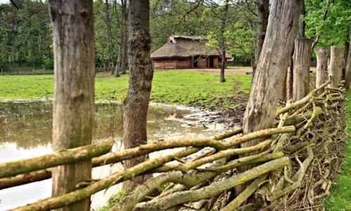 Zdjecie POLSKA / Kujawsko-Pomorski / Biskupin / Rezerwat archeologiczny.