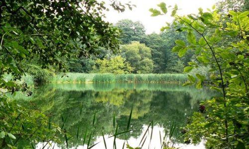 Zdjęcie POLSKA / Śląsk / Bytom / nad wodą