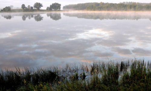 Zdjęcie POLSKA / szlak Wdy / Wdzydzki Park Krajobrazowy / Nad jeziorem