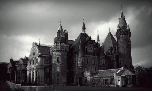Zdjęcie POLSKA / Opolskie / Zjawiskowy zamek w Mosznie / Enjoy The View
