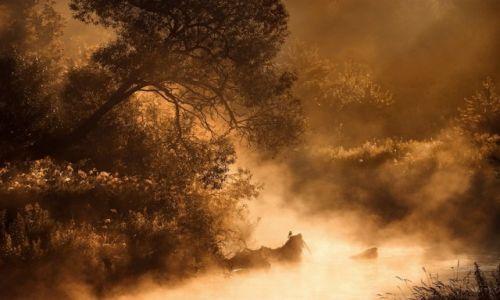 Zdjęcie POLSKA / Slask / Slask / mgłą malowane