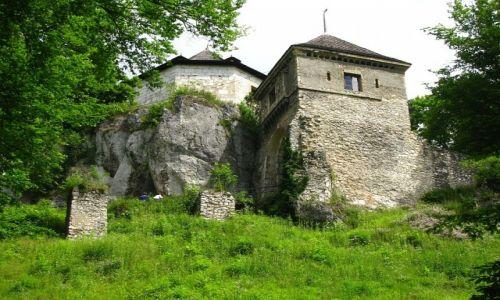 Zdjęcie POLSKA / Jura Krakowsko - Częstochowska / Ojców / zamek w Ojcowie